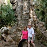 In front of The Big Oak Tree
