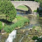 Webster Falls in June
