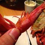 Mama Shrimp