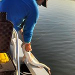 Capt Brian helping to bring it in a redfish.