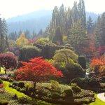 Gorgeous Landscape