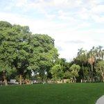 Areas verdes cercanas