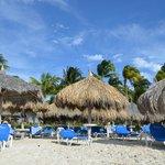 Playa IV