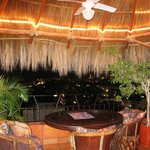 Palapa and Incredible view from #401