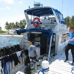 Dive trip to Blue Hole and Half Moon Caye