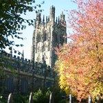 Church leaves fall