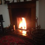 log fire in action