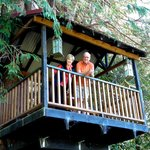 The treehouse (Robbert and Pam)