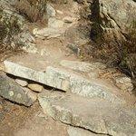 Désert des Agriates_chemin rocailleux