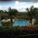 Coco's pool
