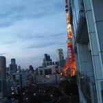 東京タワーはベランダからギリ見える程度でした