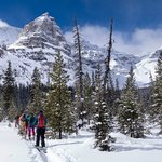 Ski touring at Chickadee Valley, just 10km from the hostel