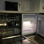 Dishwasher and mini-fridge