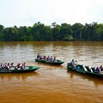 Guests on their River Safaris