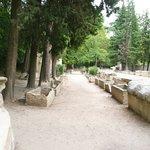 L'allée des sarcophages