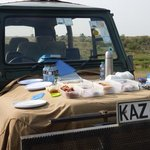 picnic breakfast on game drive