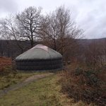 18ft yurt all on its lonesome.