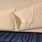 How dirty are the pillows. We checked out immediately due to rashes and dirty room.