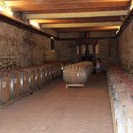 The wine ageing in barrels