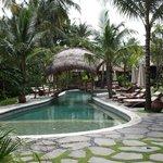 Swimming pool at alaya resort