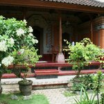Gandra House Ubud bungalows scattered within blooming garden