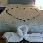 Loved the swan towels!