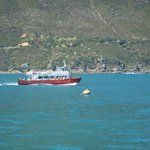 Picture taken in Hout Bay