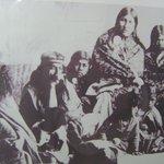 familia patagona