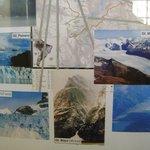 los glaciares de la zona y su retroceso historico