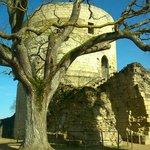 Citadelle Chinon
