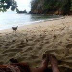 peeps on the beach