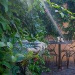 Travel Lounge Garden