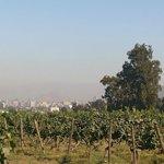 A vinícola é de fácil acesso, dá pra ver a cidade de lá