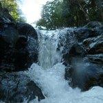 florida falls