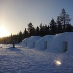 the snow igloos