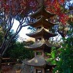 Pagoda - a gift from city of Toyonaka, Japan