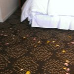 Rose Petal from the walk way to the bedroom of the suite