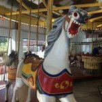 One of the horses you can ride on.