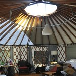 View from inside oour yurt