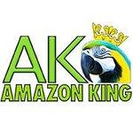 AMAZON KING LODGE