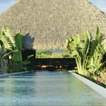 VUE FROM THE POOL TO THE MAIN PALAPA
