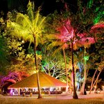 Private dinner on the beach with special lighting