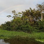 Rainbow over the river and jungle