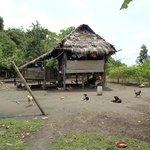 Home of Amazonian family