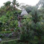 Vista jardines