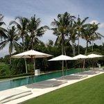 Villa Infinity pool