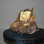 Pepita de Ouro na coleção de Geologia.