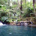 Top of main pools