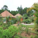 Nos bungalows au milieu du jardin...
