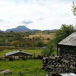 farm + views